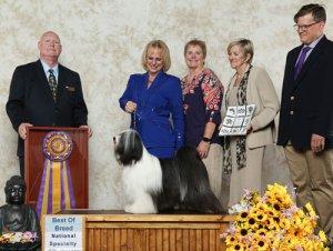 BOB winner photo with judge and handler