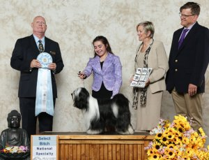 Select Bitch winner photo with judge and handler
