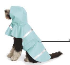 dog with pale blue raincoat